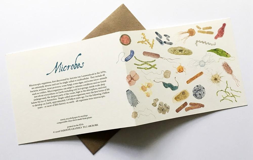 Microbes greeting card thumb
