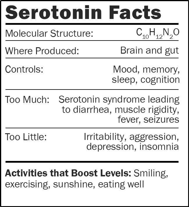 Serotonin plush doll