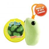 Flu Key Chain 12 Pack