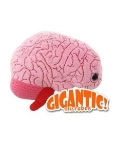 Brain Gigantic