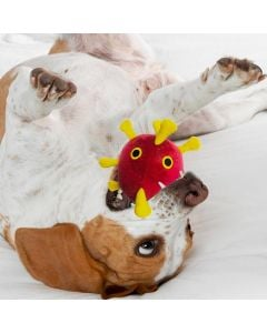 COVID Dog toy in mouth