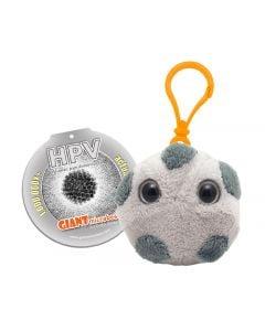 HPV key chain