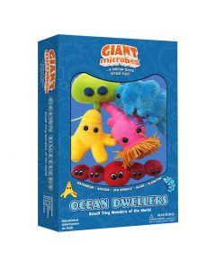 Ocean Dwellers box