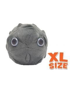 Polio XL size