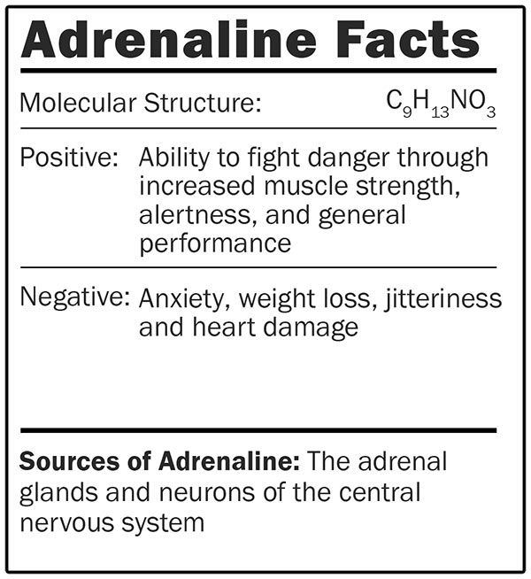 Adrenaline facts