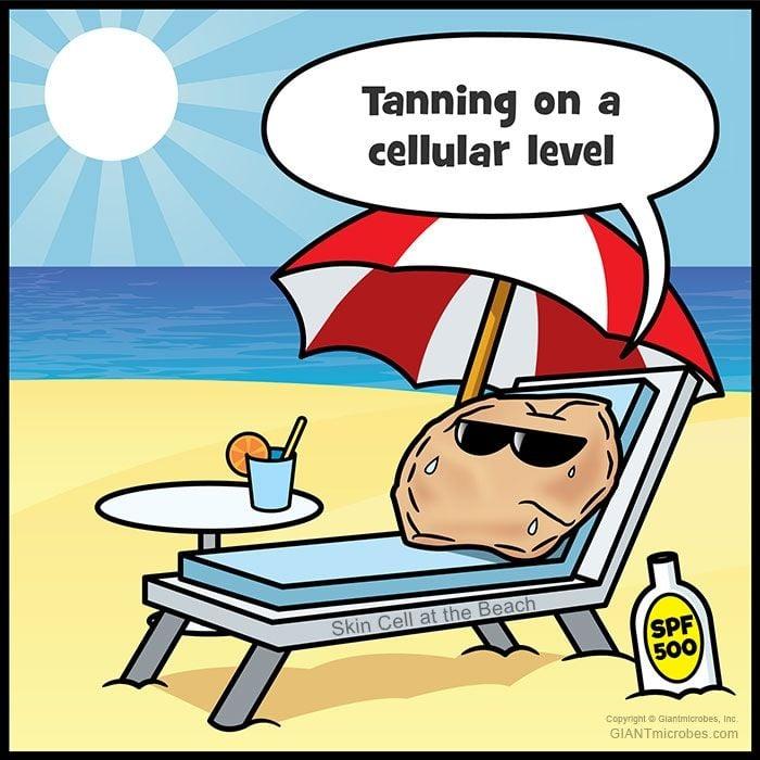 Beach Skin Cell cartoon