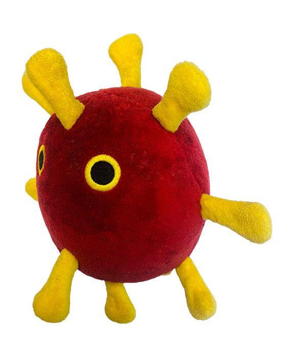 Coronavirus dog side view