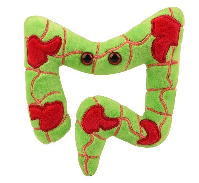 Crohn's plush front