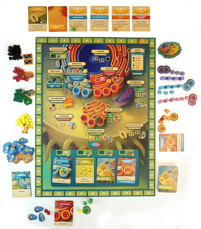 Cytosis game pieces