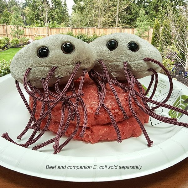 E. coli hamburgers