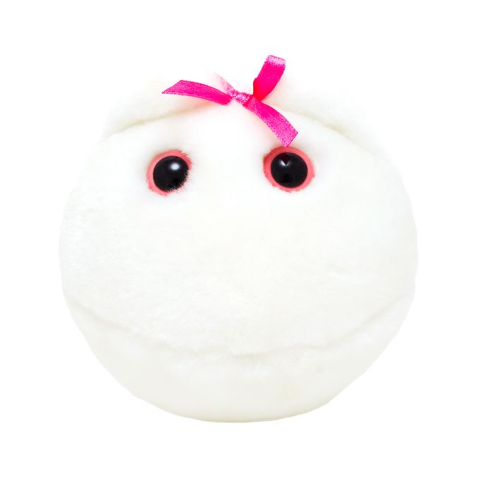 Egg Cell plush