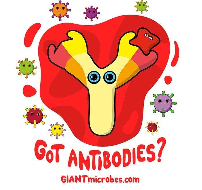 Got Antibodies? design