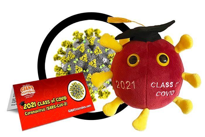 Graduation COVID 2021 cluster