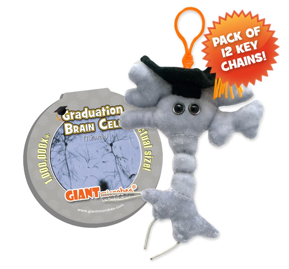 Graduation Brain KC Pack