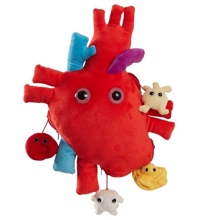 Heart XL main