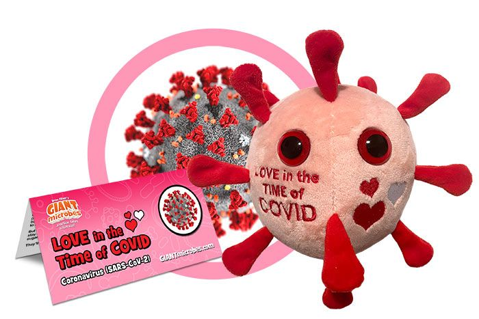 Love in the Time of COVID cluster