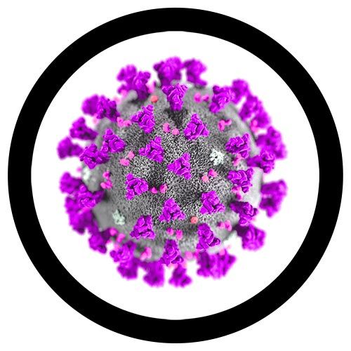 MERS microbial