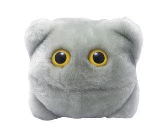 Norovirus plush