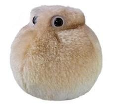Fat Cell plush