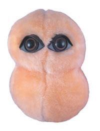 Pneumonia doll