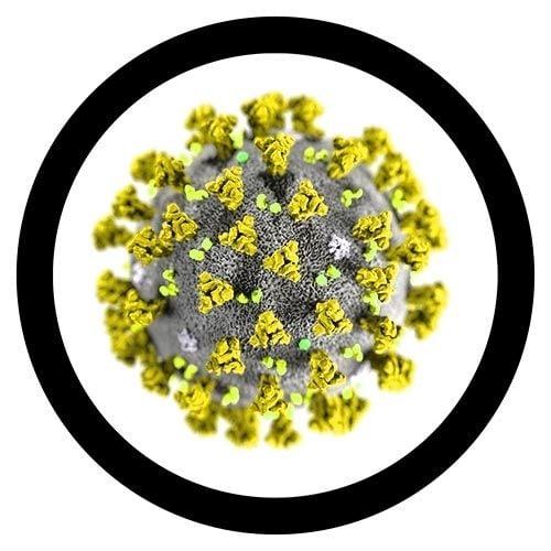 SARS-CoV-2 microbial