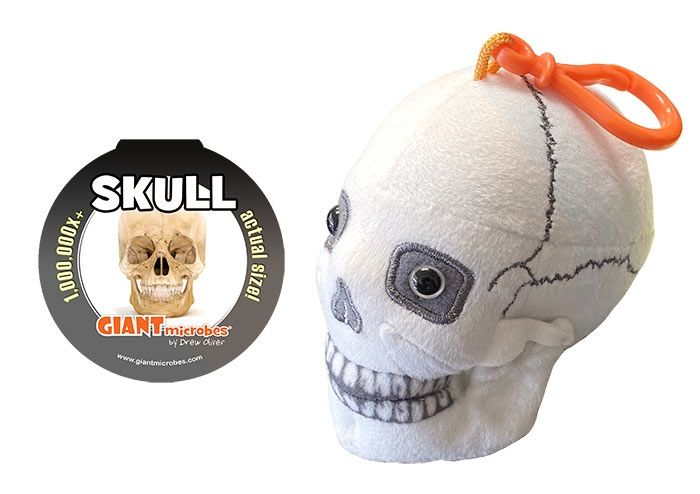 Skull key chain with tag