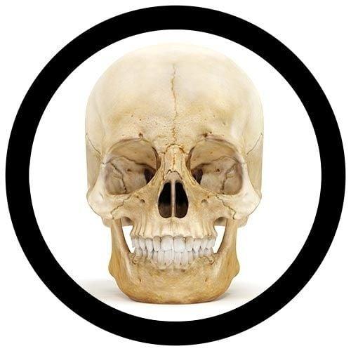 Real Skull image
