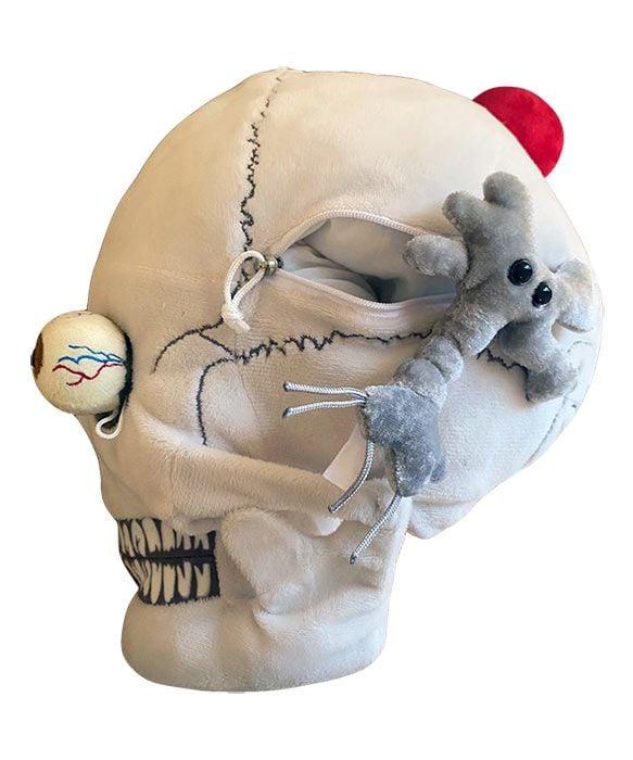 Deluxe Skull side 2