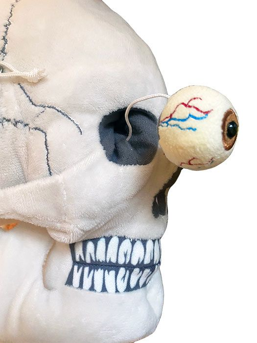 Deluxe Skull close up