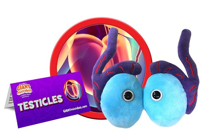 Testicles plush cluster