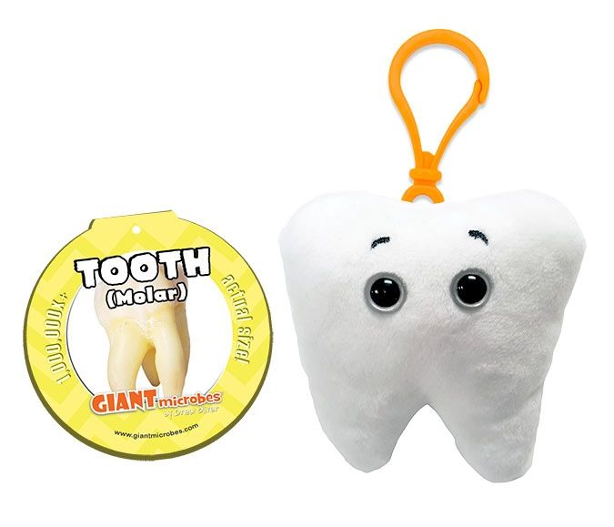 Tooth Key Chain with tag
