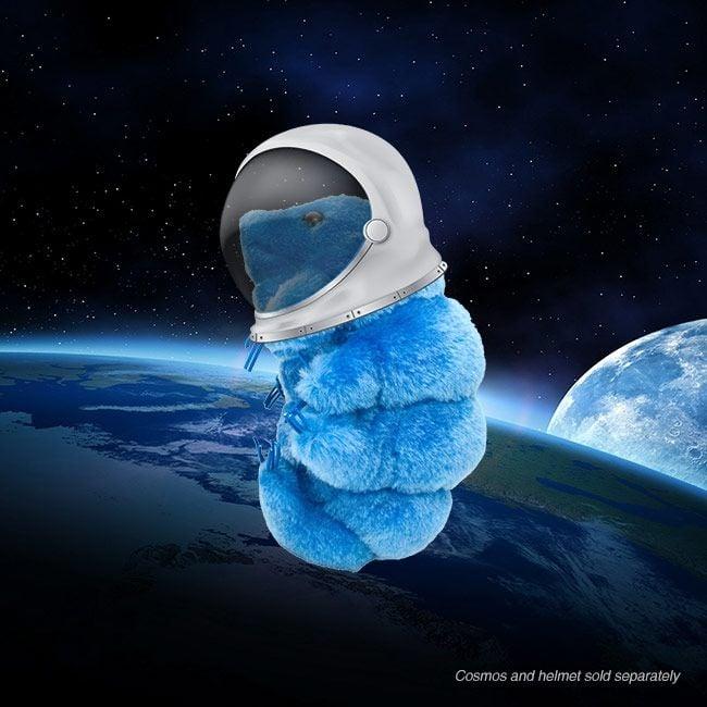 Waterbear in space