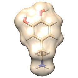 Dopamine under a microscope!