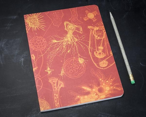 Microbiology Softcover Notebook under a microscope!