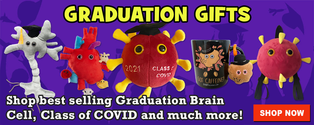 Class of COVID and Graduation Gifts